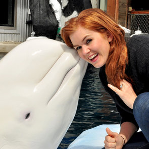 Isla Fisher With a Beluga Whale | Pictures
