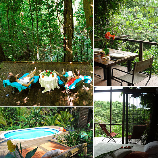 The jungle tree house in puntarenas costa rica boasts a for Tree house for sale costa rica