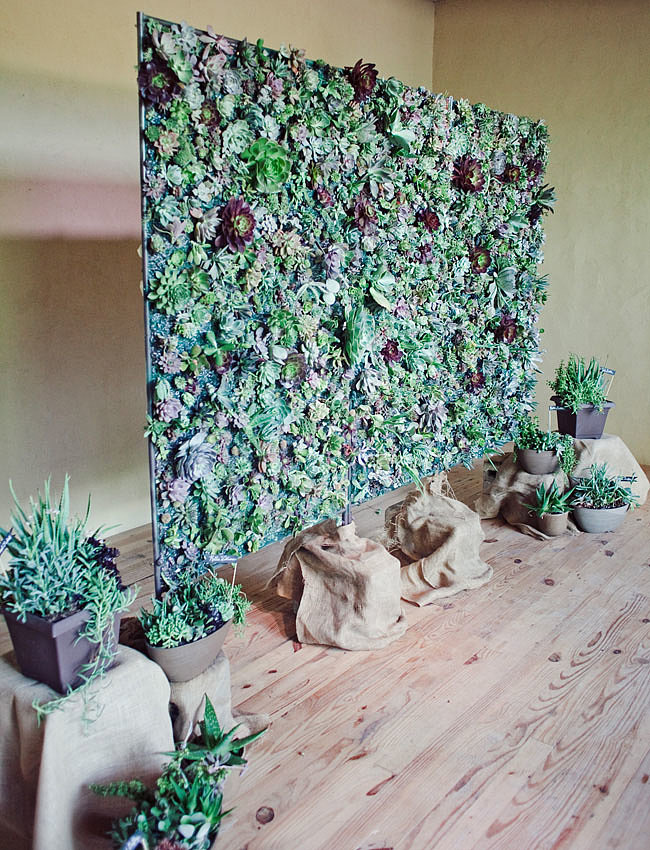 Count this as one of the most stunning backdrops we've seen. Made from plants like aloe vera, this wall is pure succulent sweetness.  Photo by The Nichols via Green Wedding Shoes