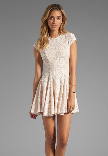Torn by Ronny Kobo Cristal Lace Dress