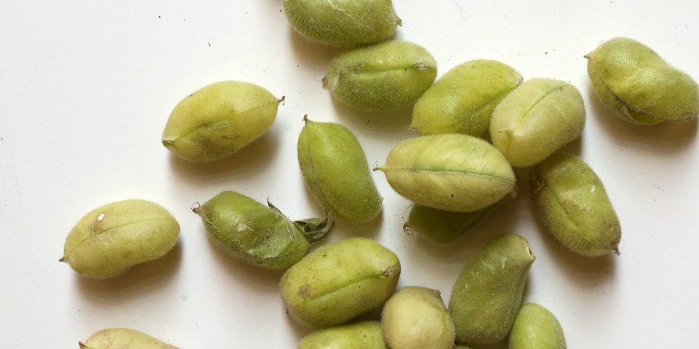how to cook fresh soybeans