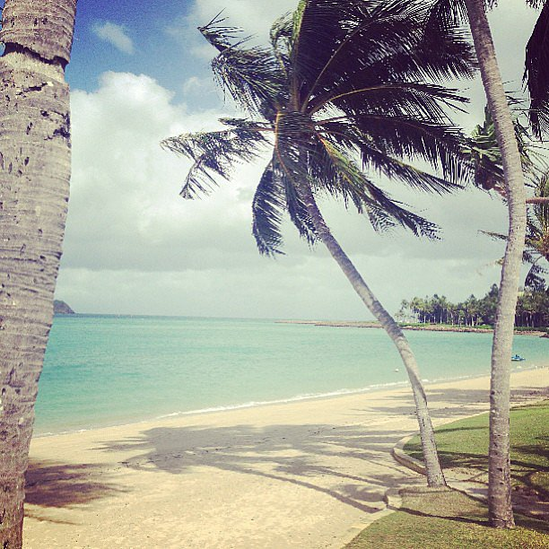 It was hard to say goodbye to this view when Alison finished her quick getaway to Hayman Island with Modelco.