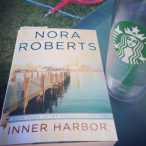 Carpenterlizzy was all about Nora Roberts for her Summer reading.