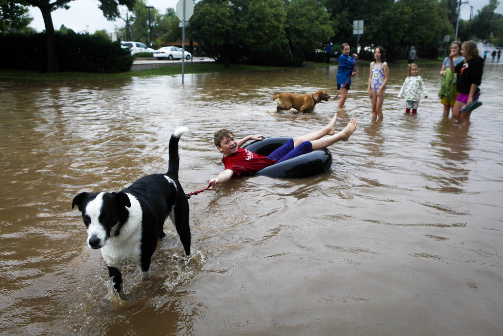 A boy took advantage of the water with a dog pulling him on an inner tube through the streets.