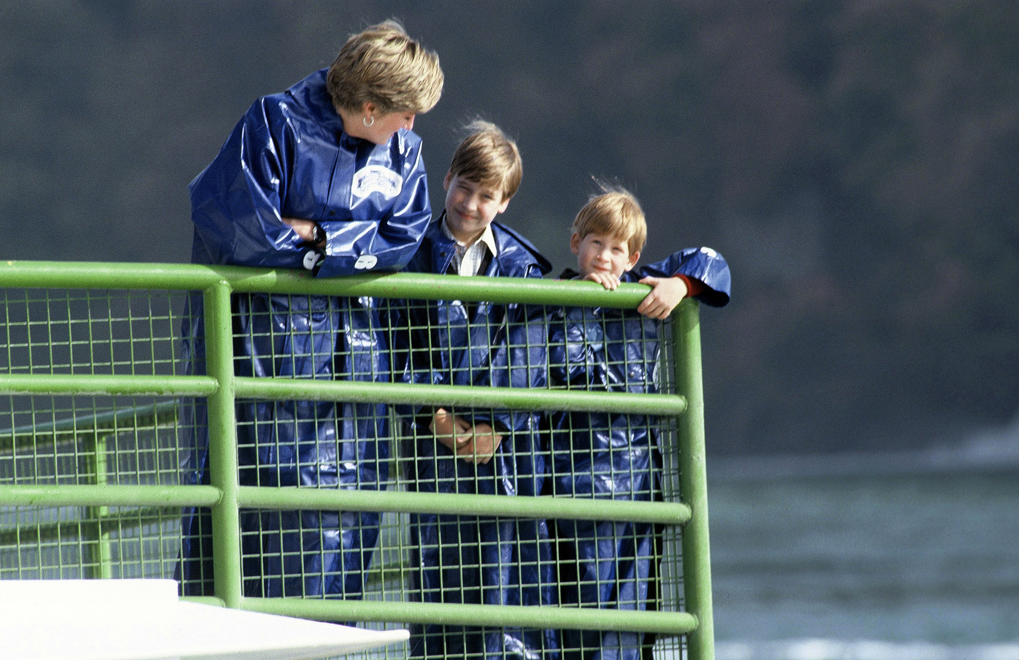 Prince Harry visited Niagara Falls with his mom and brother in October 1991.