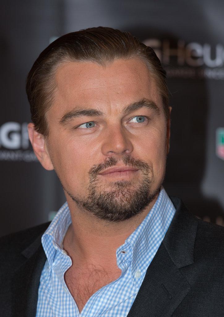 Leonardo DiCaprio: The Directed-by-Martin-Scorsese Beard