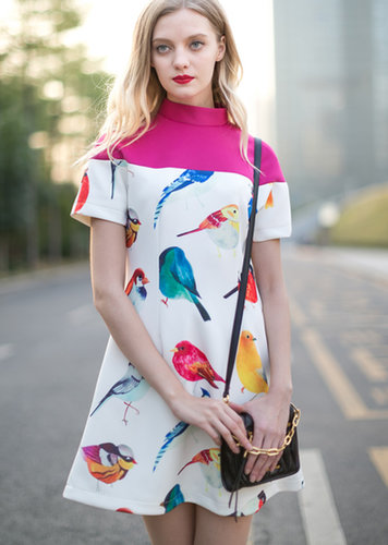 White Stand Collar Short Sleeve Birds Print Dress