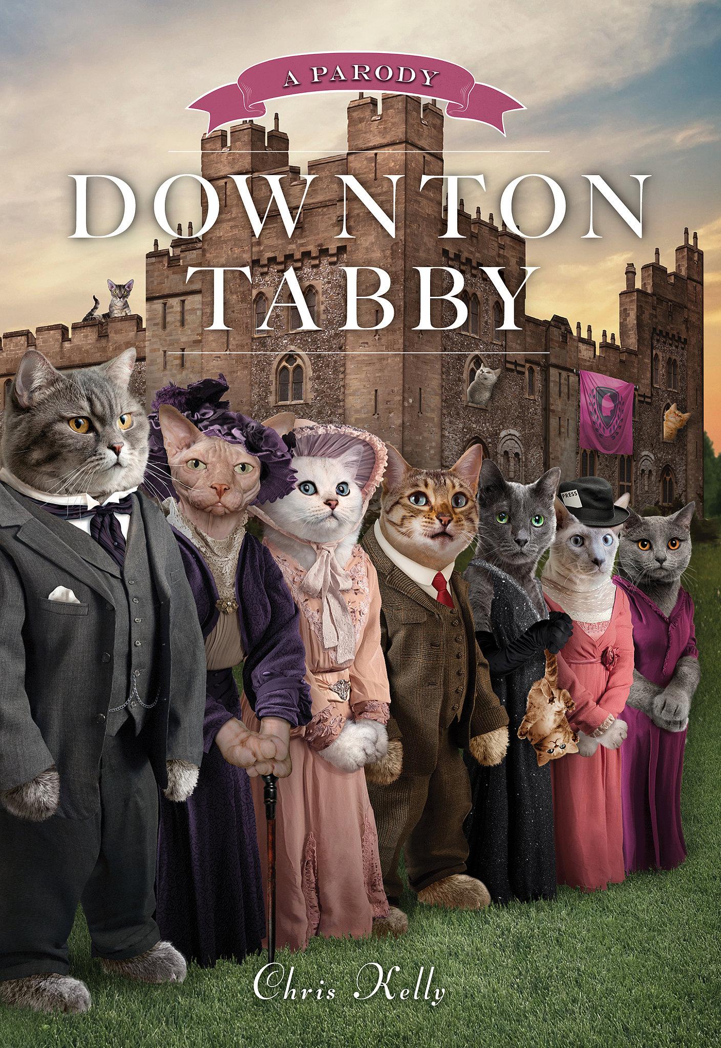 Downton Abby Book