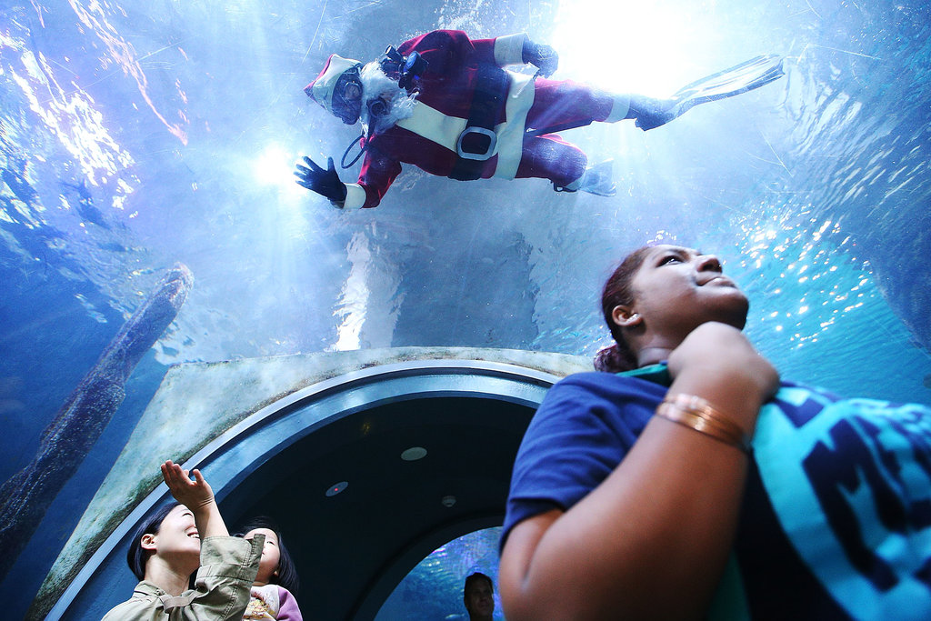 A scuba-diving Santa Claus waved at people in the Melbourne Aquarium.