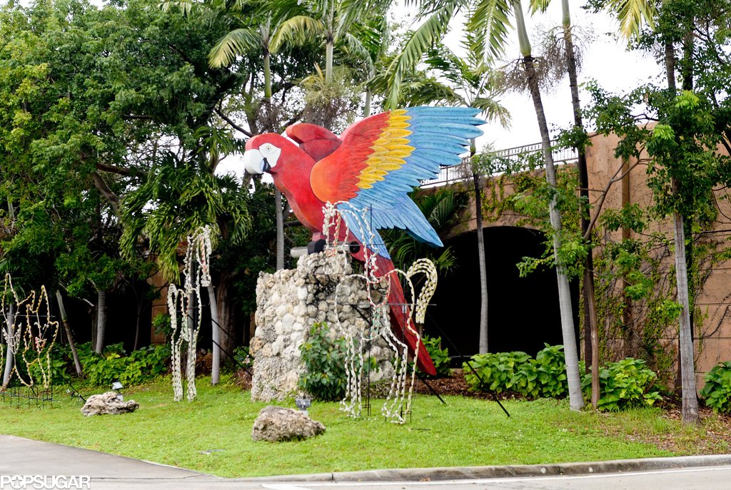 The family was greeted by enormous parrot statues!