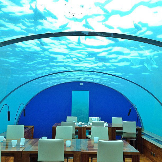 Eat in the Underwater Restaurant in the Maldives