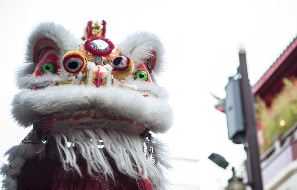 A lion dance was performed in Yokohama, Japan, in honor of the holiday.