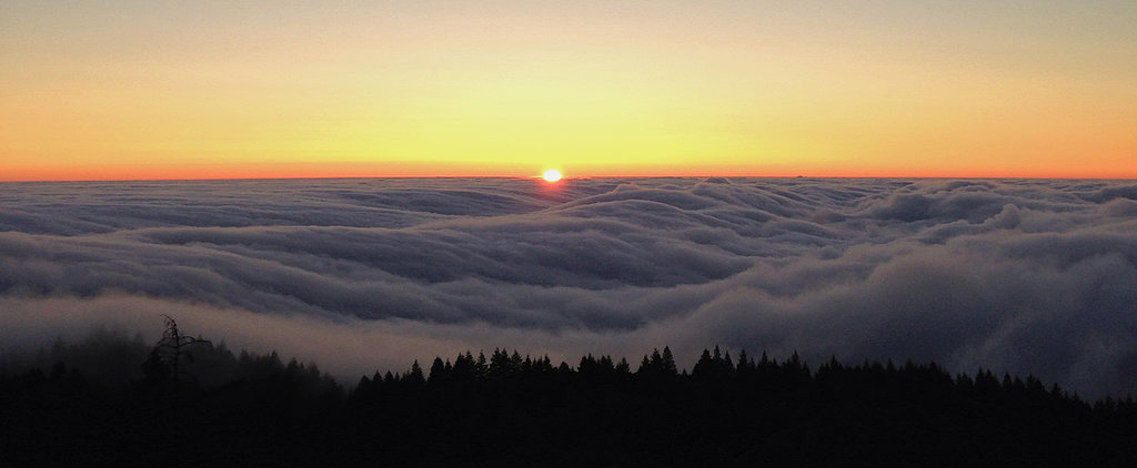 5 Reasons Fog Is the Most Romantic Weather of Them All