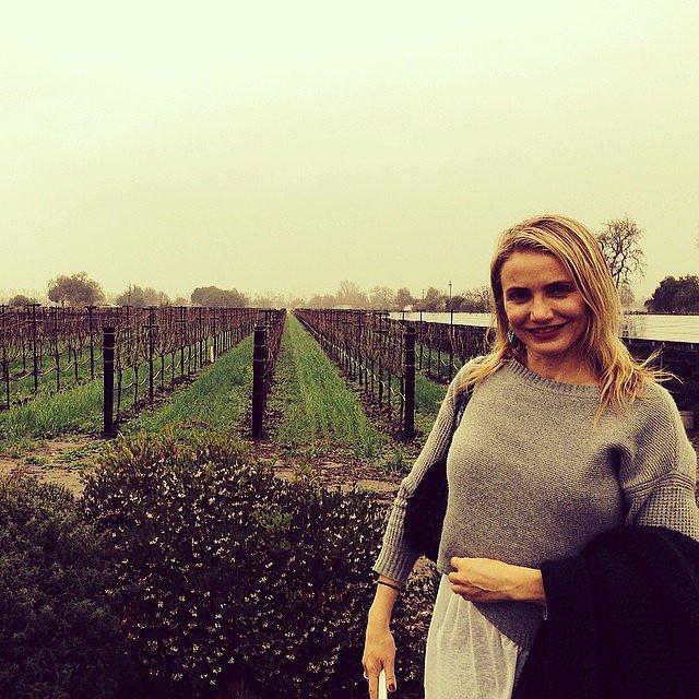 Cameron posed in front of a vineyard.  Source: Instagram user drewbarrymore