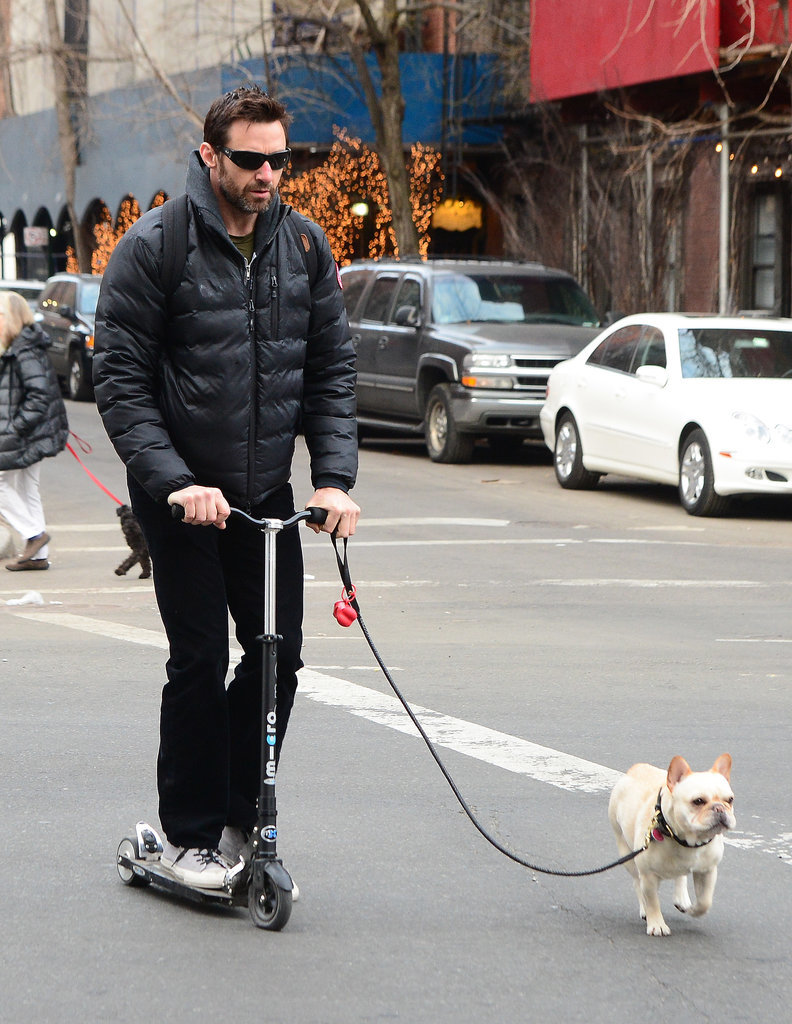 On Tuesday, Hugh Jackman took to his scooter to walk his dog in NYC.