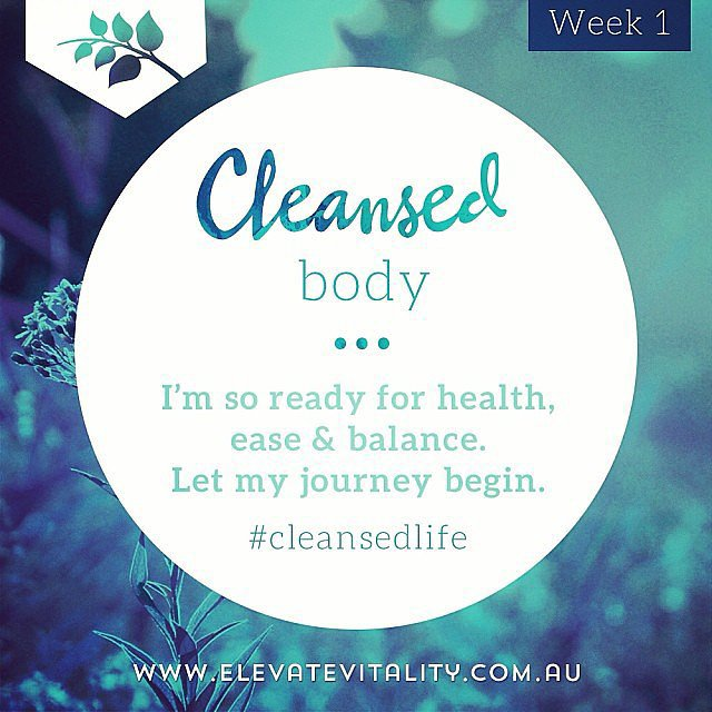 Steph is taking part in the Elevate Vitality five-week Wellness Program — we'll let you know how she progresses over the coming weeks!