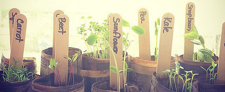 POPSUGAR Shout Out: Use That Green Thumb!
