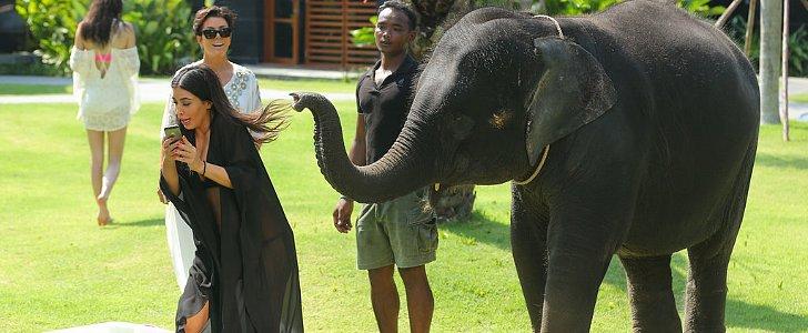 That Time Kim Kardashian Tried to Take a Selfie With an Elephant — and Failed