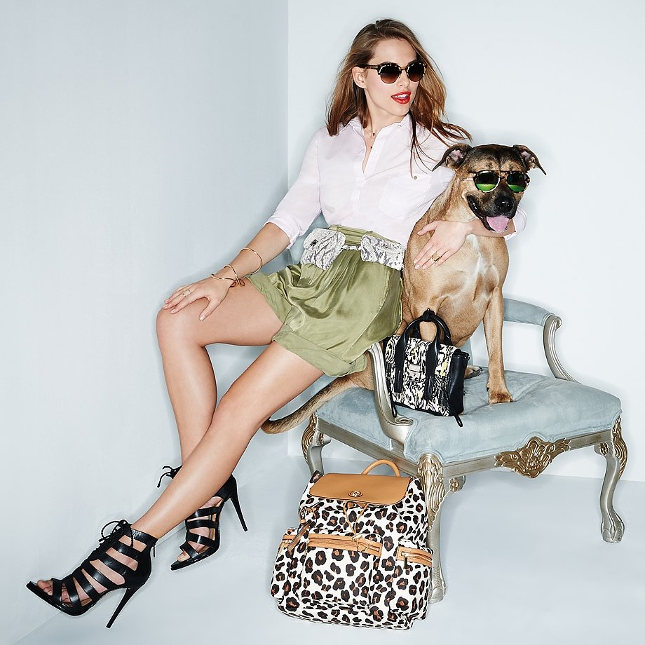 Shopbop Dogs Accessories Shoot Pictures