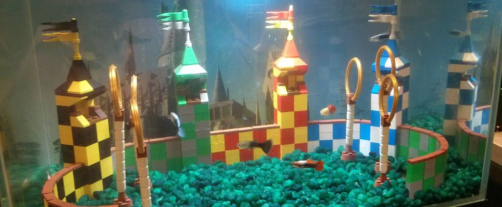 Your House Is Missing a Quidditch Aquarium