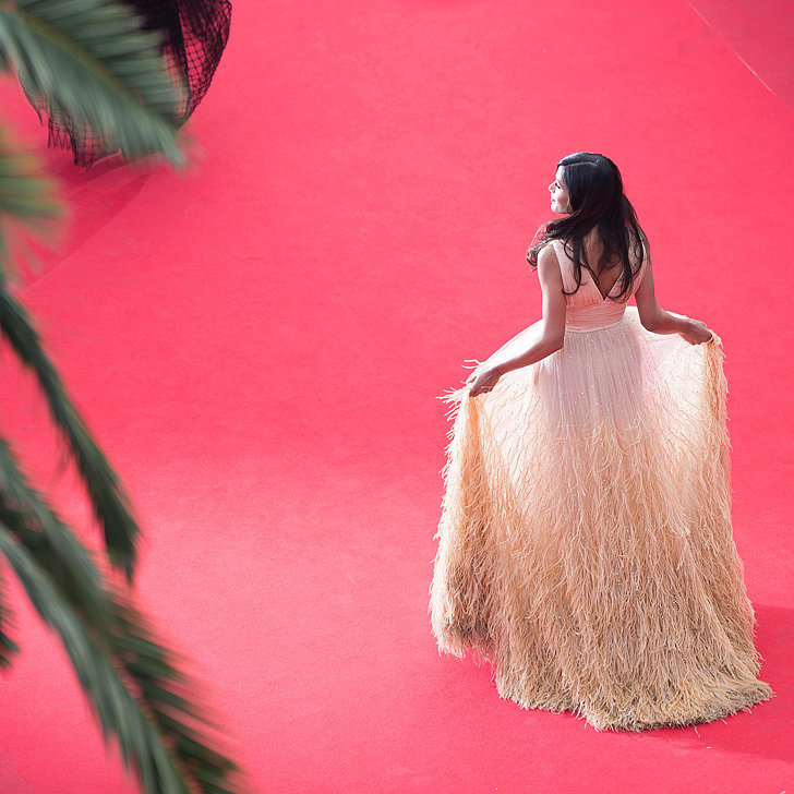 Cannes Film Festival Detail Pictures | 2014