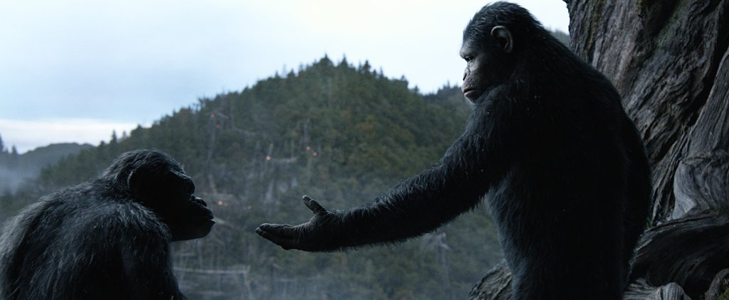 Exclusive: The Apes in Dawn of the Planet of the Apes Are Actually . . . Kind of Cute?