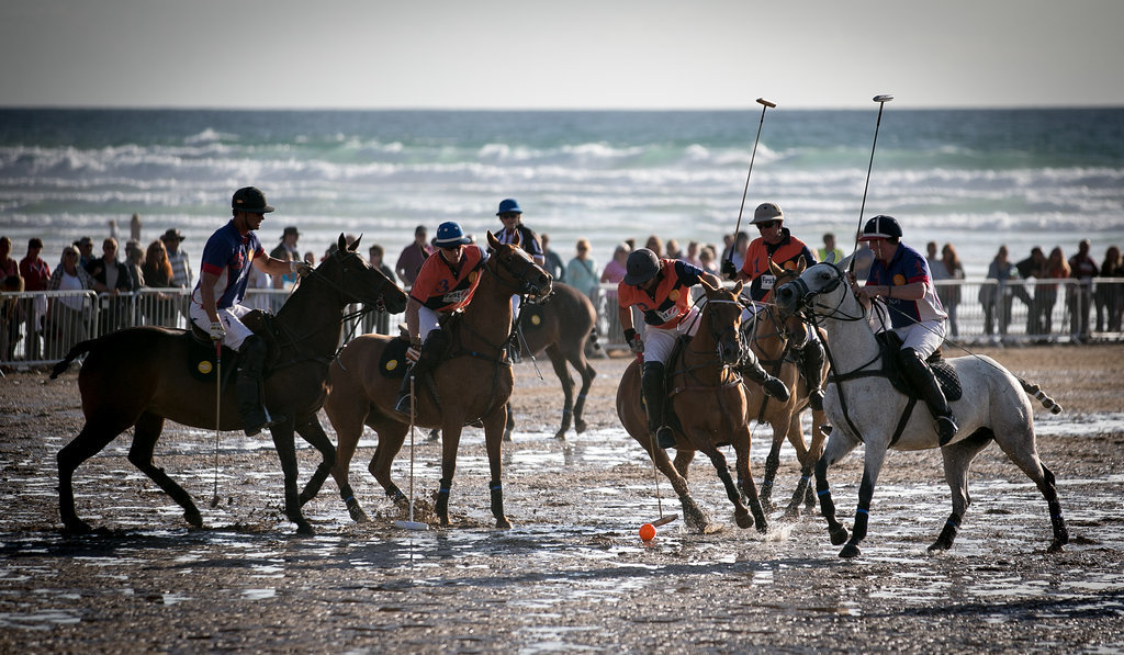 Waterfront Polo