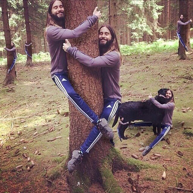 Jared Hugging Trees and His Dog