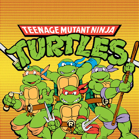 Teenage Mutant Ninja Turtles Fun Facts | Video