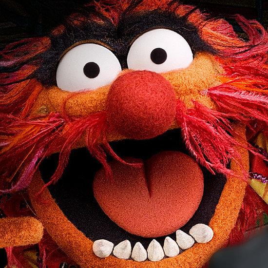 The Muppets Rap Beastie Boys Song