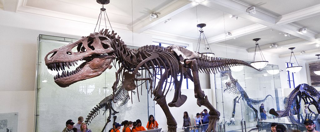 Free Admission to Over 1,500 Museums, Aquariums, and Zoos