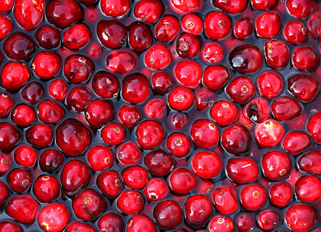 The Fall Food: Cranberries