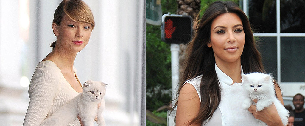 It's National Cat Day! See 12 Celebs Who Love Their Feline Friends