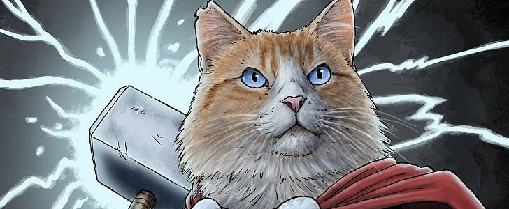 Meowma Mia! You've Gotta See Cats Dressed as Superheroes