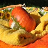Pumpkin Body Scrub