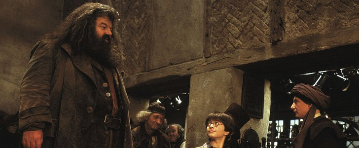 Why Hagrid Is the Only Parent Harry Potter Ever Had
