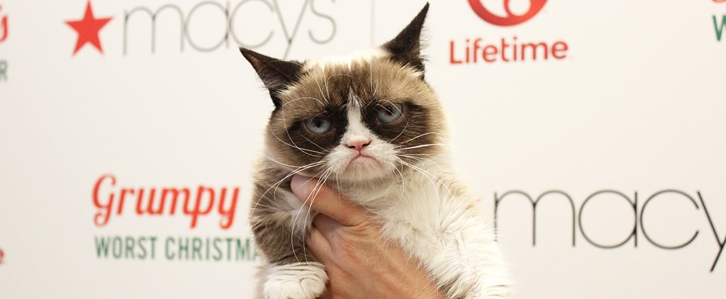 Grumpy Cat's Guide to Having the Worst Christmas Ever