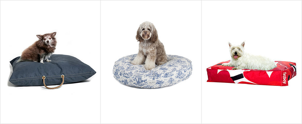 13 Dog Beds More Stylish Than Your Own