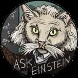 Ask Einstein: Is a Kitten a Good Holiday Gift for a Senior Citizen?