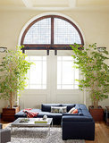 How to Create an Indoor Landscape (10 photos)