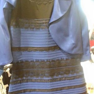 Dress Color Debate