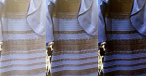 White & Gold vs. Blue & Black: Celebrities Take Sides on #TheDress