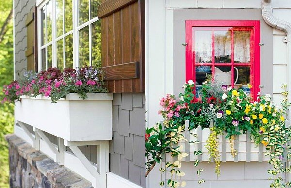 13. Shutters and Flower Boxes