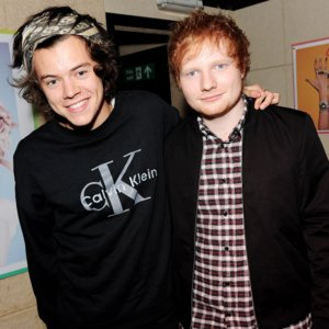 Ed Sheeran Talks About Harry Styles' Penis