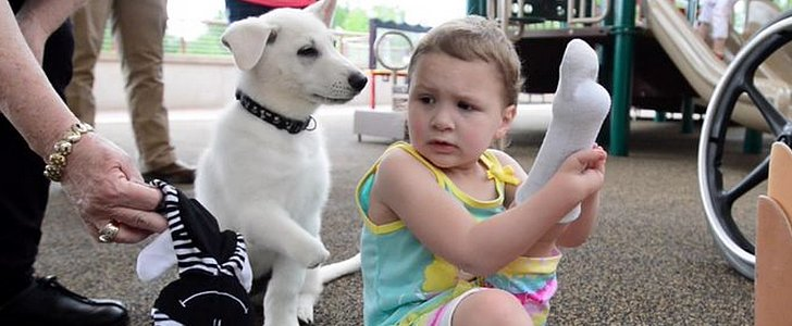 Little Girl Without Feet Gets a Puppy Without a Paw as a Gift