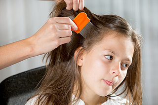 New Policy Says Kids With Lice Are Allowed to Go to School