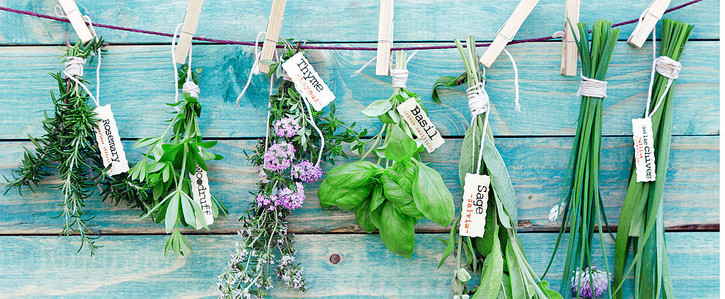 How to Grow Your Own Herbs (and Never Overpay For Them Again)