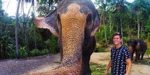 Elephant Grabs Traveler's GoPro, Snaps Selfie Of A Lifetime