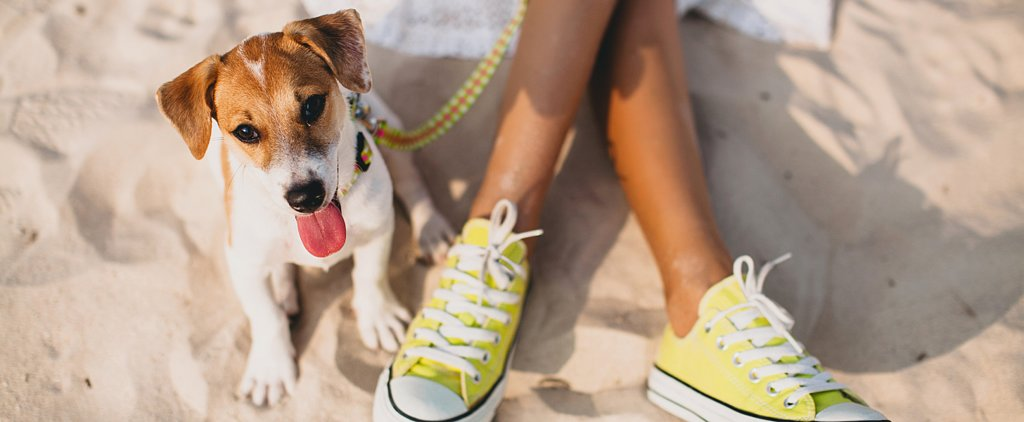 The Bicoastal Pet Rivalry You Never Knew Existed
