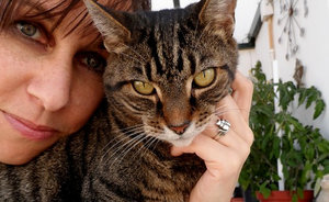 After I Married My Cats, I Became the Mad Cat-Lady Celebrity